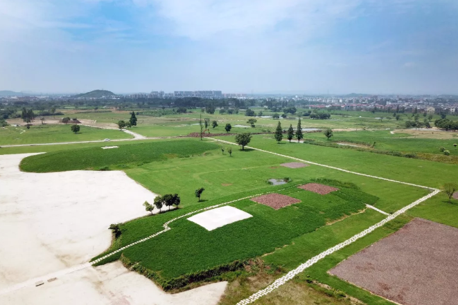 2018年6月6日,浙江杭州,正在建造中的良渚国家考古遗址公园。
