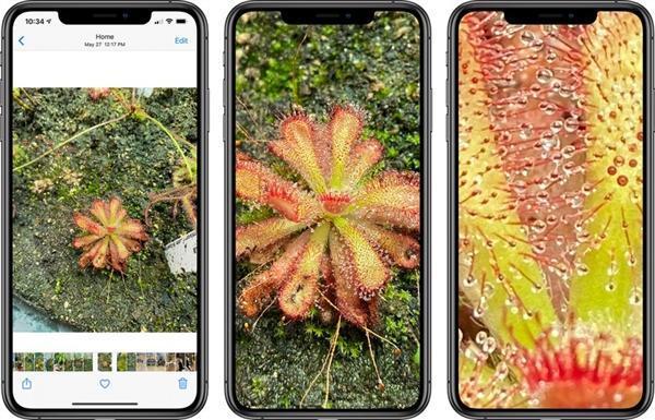iOS 14拍了拍你:值得升级的理由又多了两条!