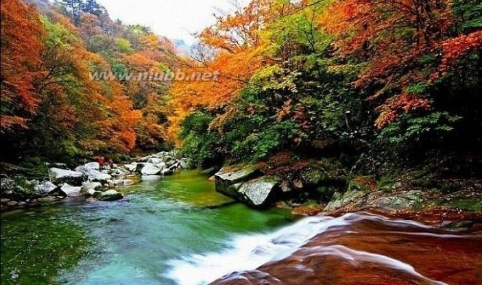 牟阳 光雾山与米仓山森林公园、牟阳古城景区、大坝景区关系
