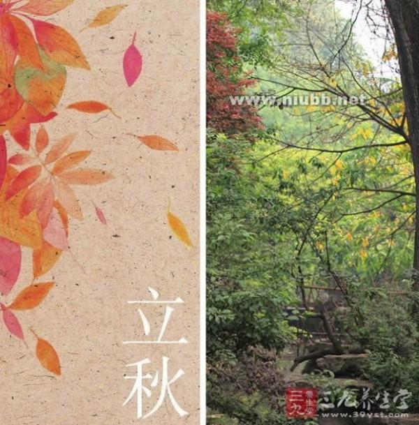 立秋是什么时候 立秋是什么时候 立秋时节注意防霉变(3)