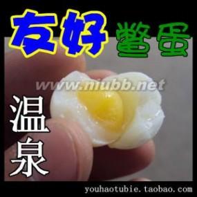 甲鱼蛋:甲鱼蛋-甲鱼蛋,甲鱼蛋-区别甲鱼蛋的好坏_甲鱼蛋
