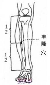 丰隆穴 足阳明胃经丰隆穴位位置图_按摩丰隆穴的作用与好处