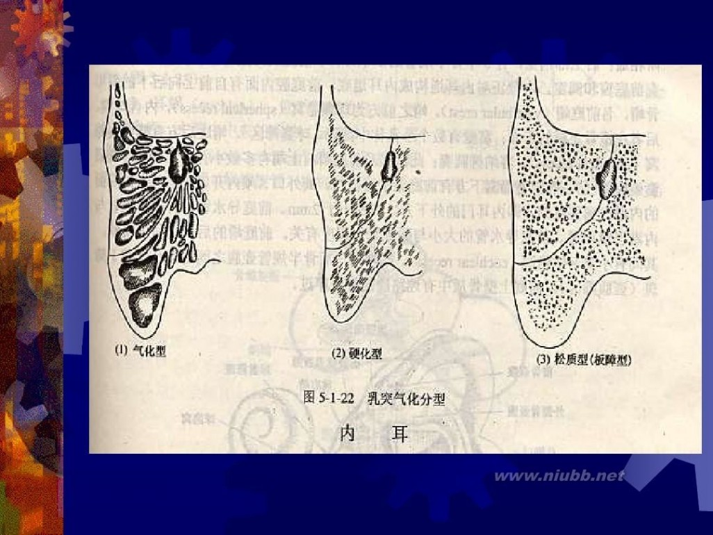 耳鼻喉科学 耳鼻喉科学