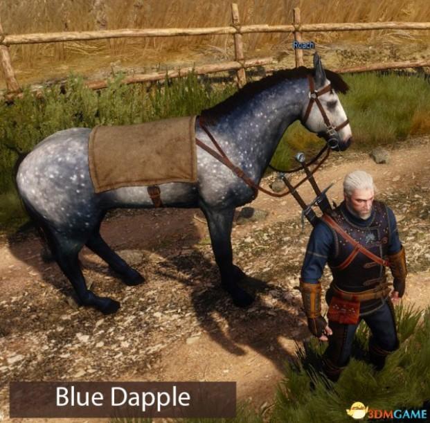 巫师3 巫师3mod 巫师3坐骑mod 巫师3最新mod 巫师3mod下载