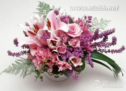 家里养什么花好 【养花知识】家里养什么花好 室内养花要注意哪些?