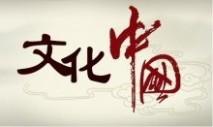 关于文学的作文 关于中国文化的作文600字