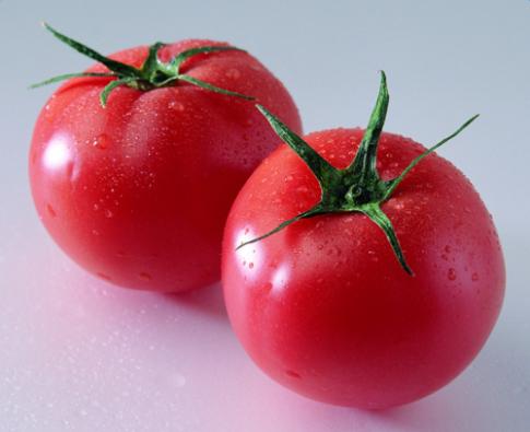 西红柿怎么保存
