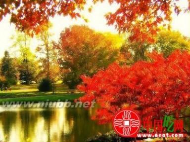 2013立秋是哪一天 立秋是什么时候,凉快了吗