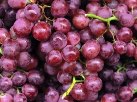 怎么挑选新鲜的葡萄