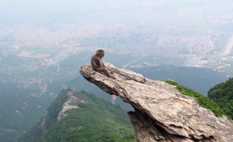 苏州虎丘山是著名的风景名胜区,已有二千五百多年悠久历史,素有