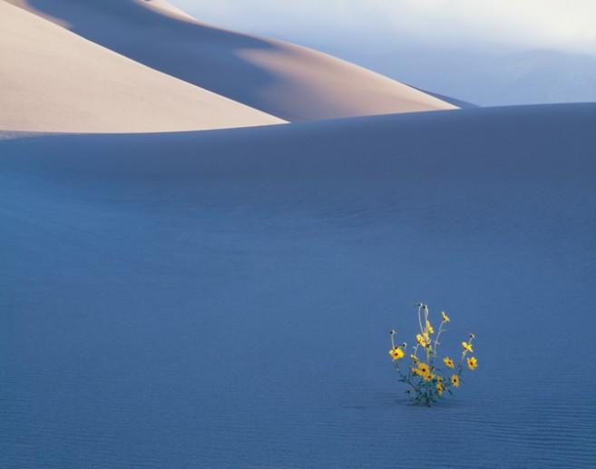 风光摄影需要掌握哪些技巧