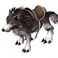 《梦幻古龙》宠物资料