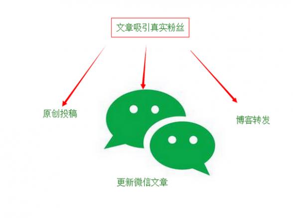 www.seomrt.com