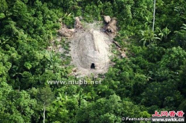 巴西在丛林中发现与世隔绝的新原始部落