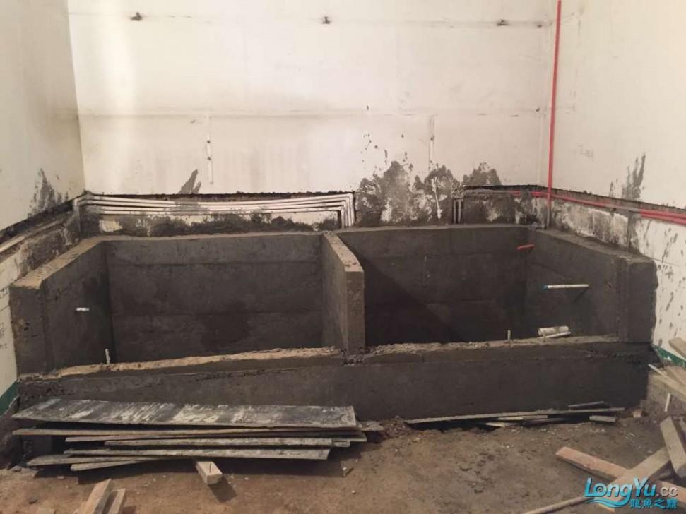 龍魚之巔魚缸制作 走上一條不歸之路,7年后又一力作。