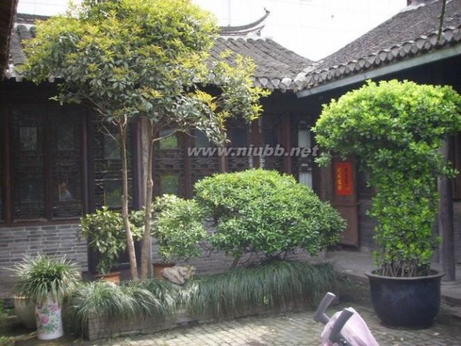 百年老宅 石合泰:我曾居住过的百年老宅