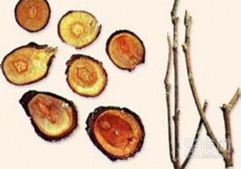桂枝的功效与副作用 桂枝的功效与作用,桂枝的功效与作用及禁忌,桂枝有什么功效