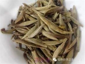 白毫银针 福鼎白茶:200元一斤的白毫银针长这样!!