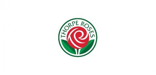 Thorpe Roses