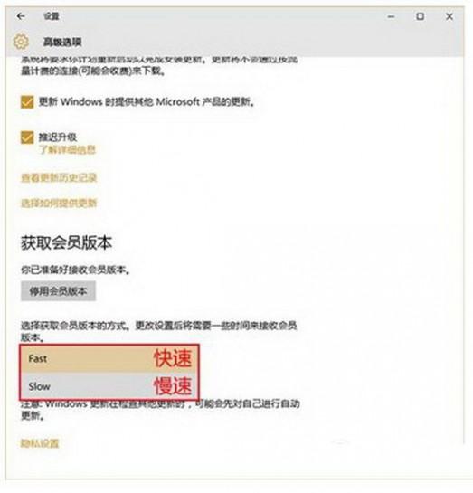 win10预览版怎么更新 win10预览版更新升级图文教程3